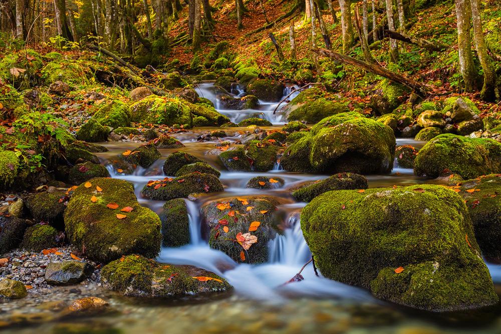 Course of Life, Wasserfall nahe des Tegernsees, Bayern Deutschland