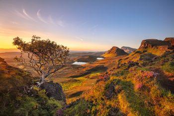 Landschaftbilder reduzieren Stress
