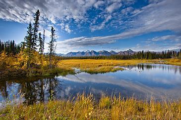 Alaska Highway View, USA