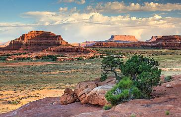 Canyonlands Nationalpark, Needles District, Utah, USA